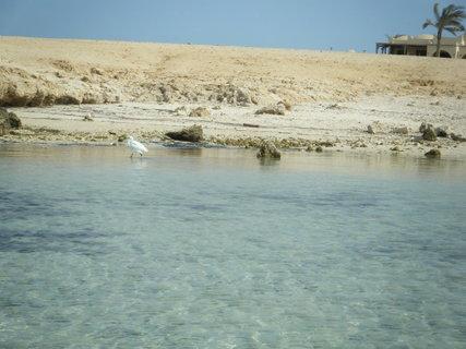 FOTKA - Pláž 5