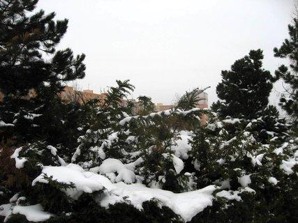 FOTKA - Zima na sídlišti 54