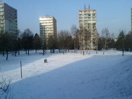 FOTKA - 24.1.2013