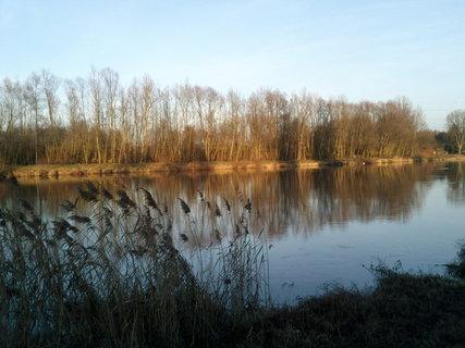 FOTKA - 26.1.2013