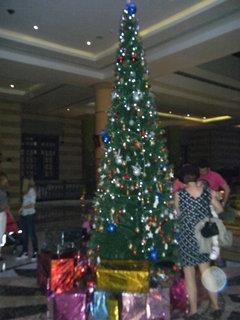 FOTKA - Vánoce v Egyptě 2