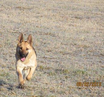 FOTKA - Už běžím.