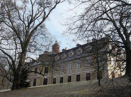 FOTKA - Zámek Rájec- Jestřebí bude otevřený  1.-10. března 2013, s kaméliemi v interiérech