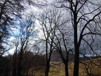 FOTKA - příroda*48