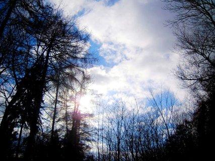 FOTKA - příroda*57