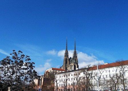 FOTKA - Letos v Brně..
