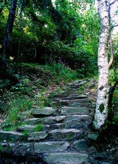 FOTKA - Březové schody