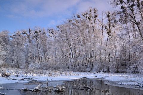 FOTKA - Zimní zákoutí