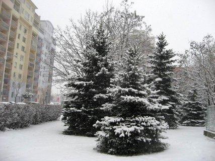 FOTKA - Zima na sídlišti 55