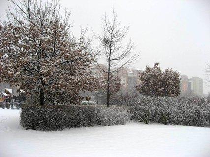 FOTKA - Zima na sídlišti 56