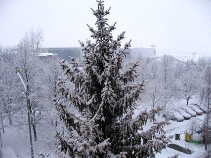 FOTKA - Zima na sídlišti 59