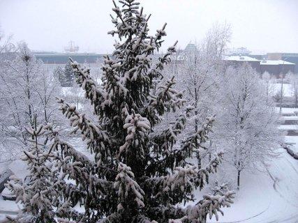 FOTKA - Zima na sídlišti 60