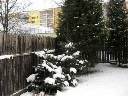 FOTKA - Zima na sídlišti 61