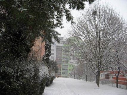 FOTKA - Zima na sídlišti 62
