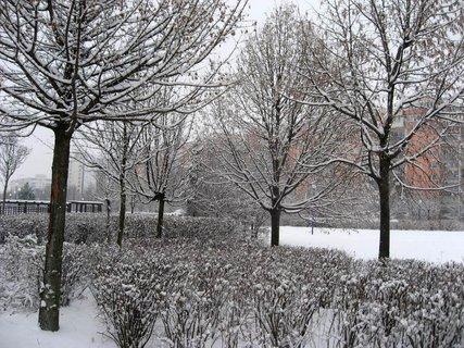 FOTKA - Zima na sídlišti 65
