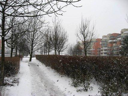 FOTKA - Zima na sídlišti 69