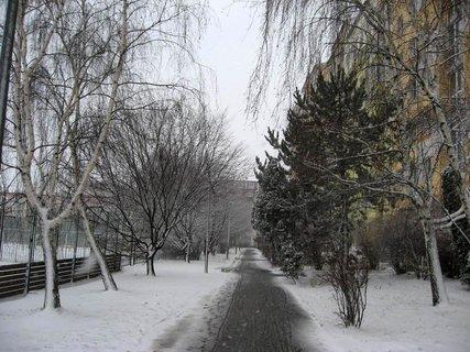 FOTKA - Zima na sídlišti 71