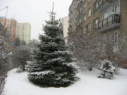 FOTKA - Zima na sídlišti 76
