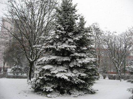 FOTKA - Zima na sídlišti 79