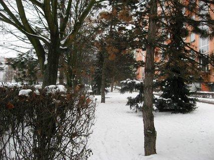 FOTKA - Zima na sídlišti 80