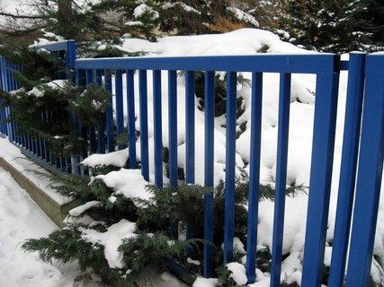 FOTKA - Zima na sídlišti 83