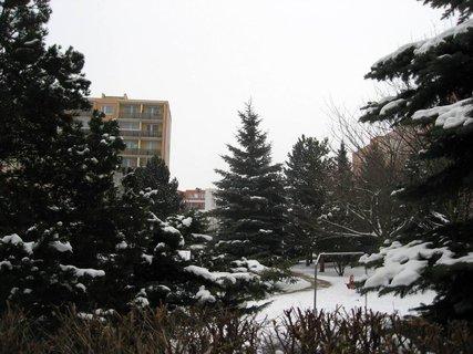 FOTKA - Zima na sídlišti 84