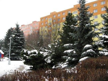 FOTKA - Zima na sídlišti 85