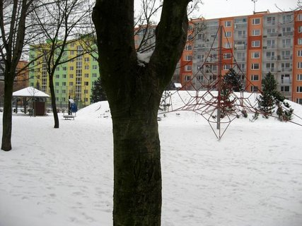 FOTKA - Zima na sídlišti 86