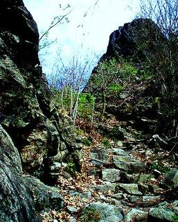 FOTKA - Schody z kamene