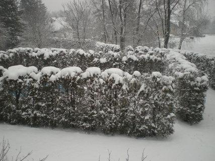 FOTKA - Pěkná sněhová nadílka