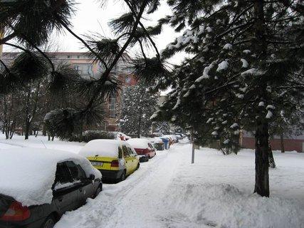 FOTKA - Ladovská zima  3