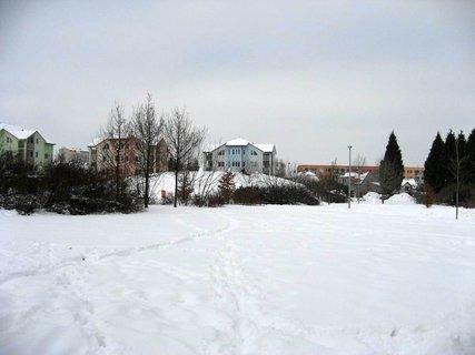 FOTKA - Ladovská zima 6