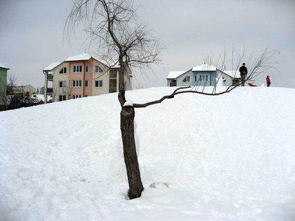 FOTKA - Ladovská zima 11