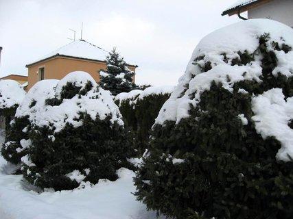 FOTKA - Ladovská zima 17