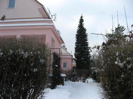FOTKA - Ladovská zima 18