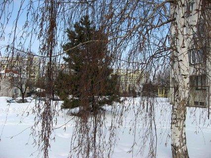 FOTKA - Ladovská zima 19