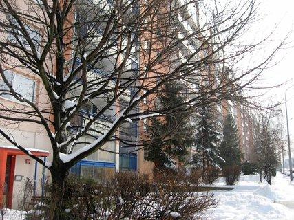 FOTKA - Ladovská zima 24