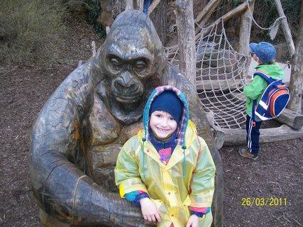 FOTKA - Domík a gorila - březen 2011