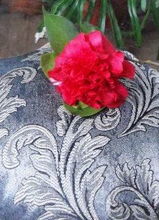 FOTKA - Kamélie -dekorace