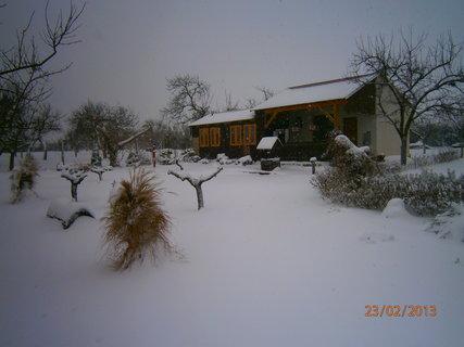 FOTKA - Poslední sněžení 1