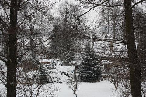 FOTKA - fuj-zima..,