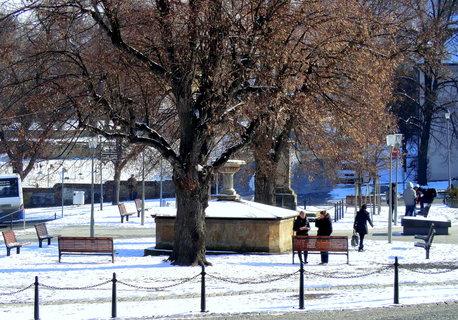 FOTKA - Mrazivý den na náměstí