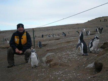 FOTKA - tučňáci a brácha, docela se skamarádili