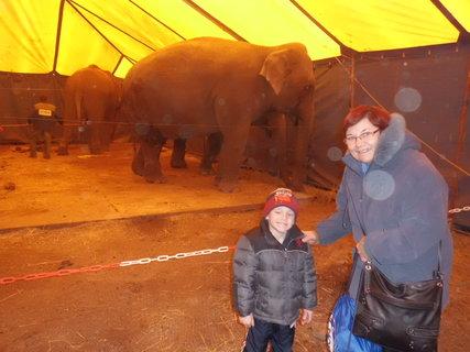 FOTKA - cirkus 3