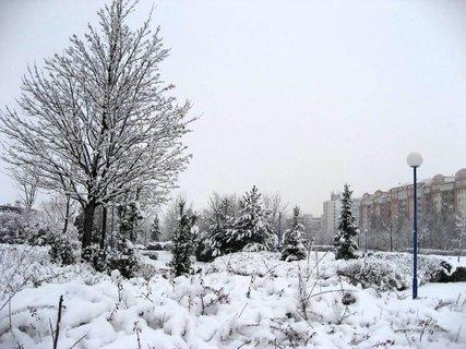 FOTKA - Jaro na sídlišti 1