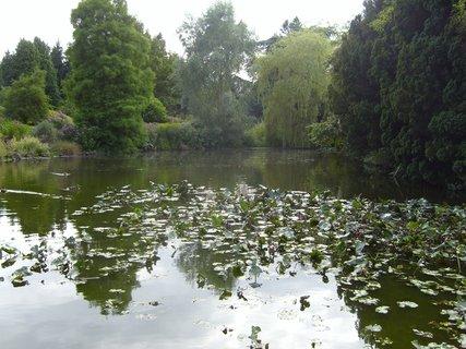 FOTKA - Královská botanická zahrada 2