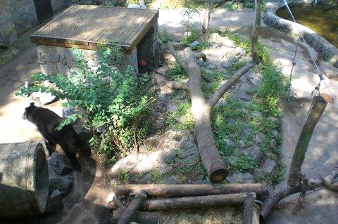 FOTKA - Konopiště, park, medvídek
