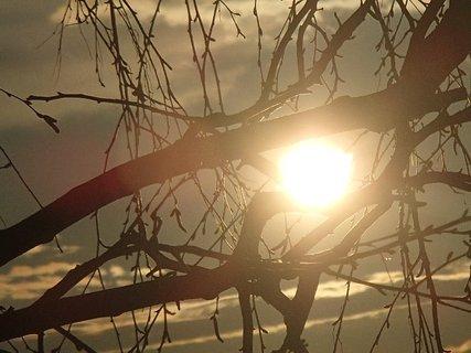 FOTKA - západ slnka 09.03.2013-slnko medzi konármi