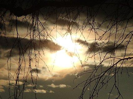 FOTKA - tmavá obloha ako pred búrkou
