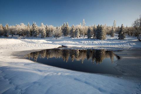 FOTKA - Velký Radní rybník...zima